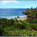 【ハワイ カウアイ島】ダイナミックな自然の孤島で太古の恐竜が跋扈する